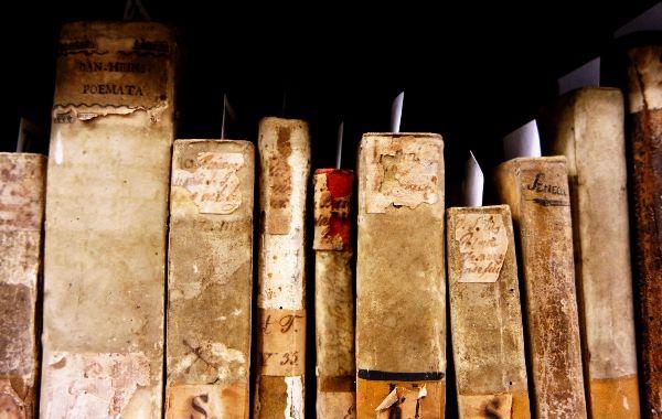 Erschliessung Bibliothek Josephinum